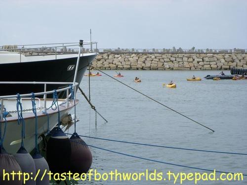 Herzliya Marina 19