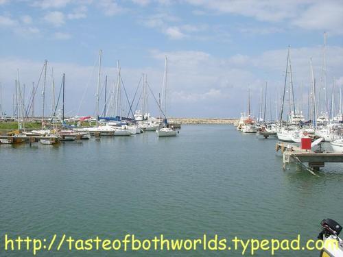 Herzliya Marina 5